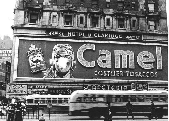 Camel Billboard 1