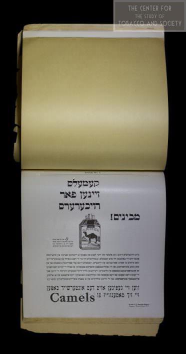 Hebrew Camels wm