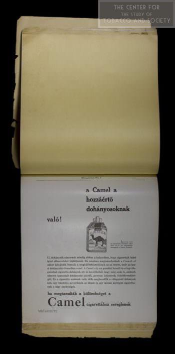 Hungarian Camels wm