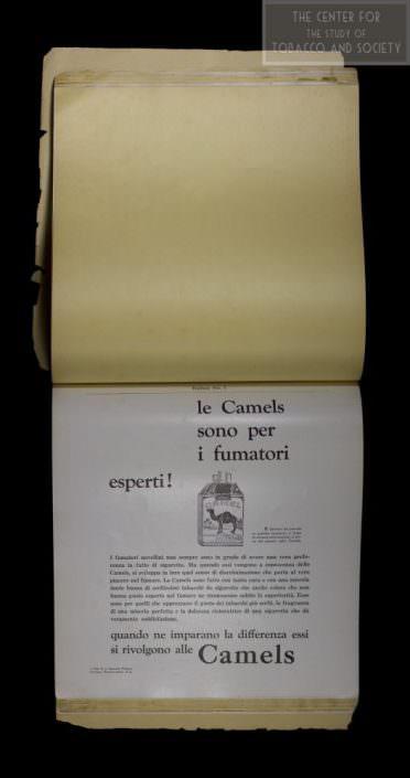 Italian Camels wm