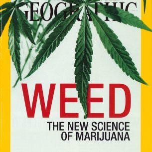 Marijuana 1 wm