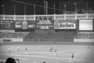 Yankee Stadium Skoal