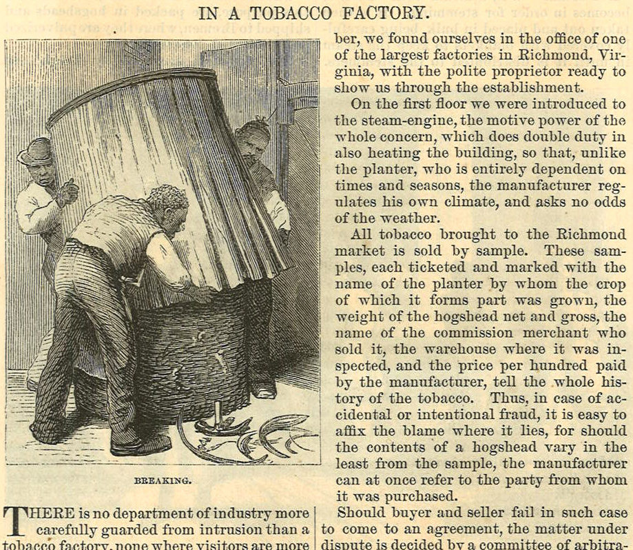 Harpers Weekly 1854 In a Tobacco Factory  Excerpt