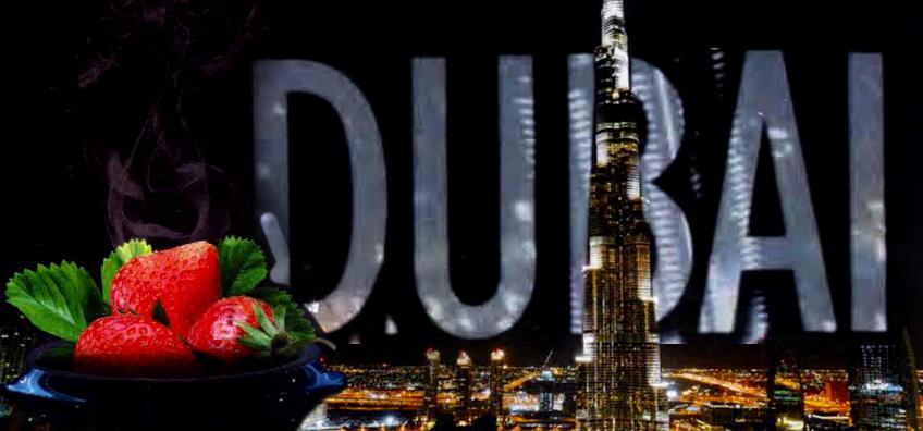 2015 UAE Paradox Poster