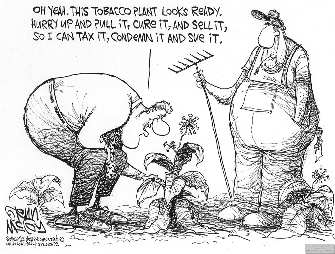 McCoy Cartoon Clinton Examining Tobacco Plant